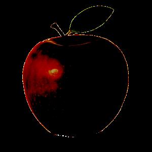 Apple to CreateSpace store